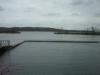 Arbuckle Lake